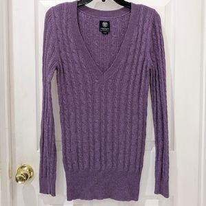 AEO Purple Cable Knit V-Neck Sweater